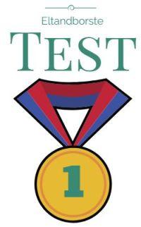 test av eltandborstar