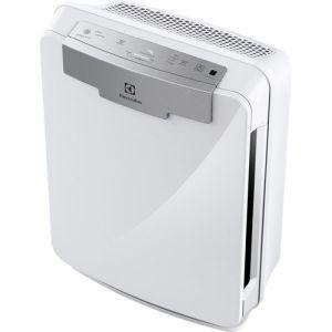 2. Electrolux EAP300